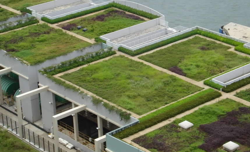 Green_Roofing